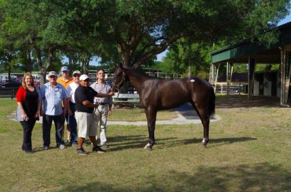 Pink Cashmere, Eskendreya, Suzee Sunrise, Kenwood Racing, OBS sales